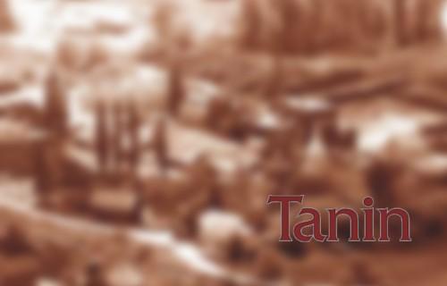 Tanin Sevnica d.d.