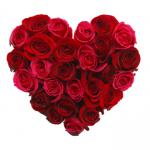 promo_VD3_rose heart